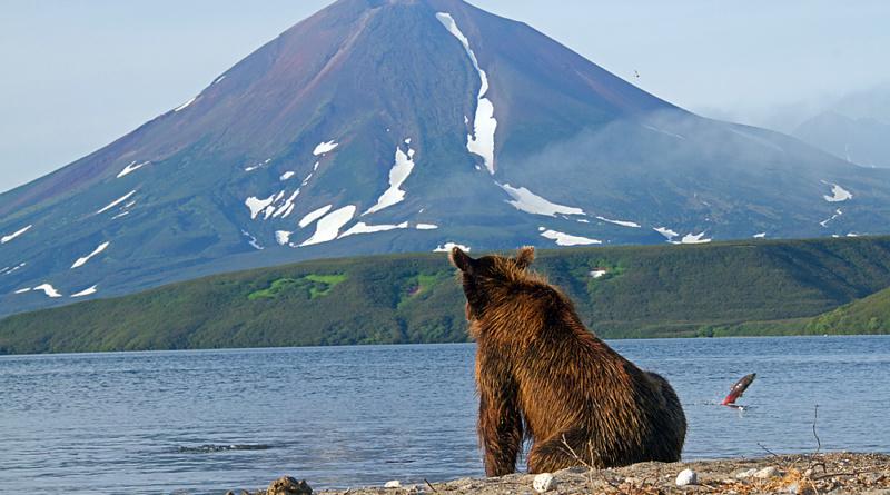 Ilynsky-Vulkan, Kamchatka, Foto: Reno Sommerhalder