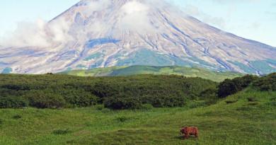Kambalny Vulkan, Kamchatka, Foto: Reno Sommerhalder